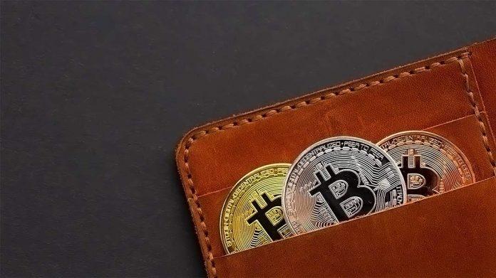 cartera llena de bitcoins