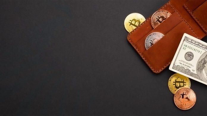 cartera de bitcoins