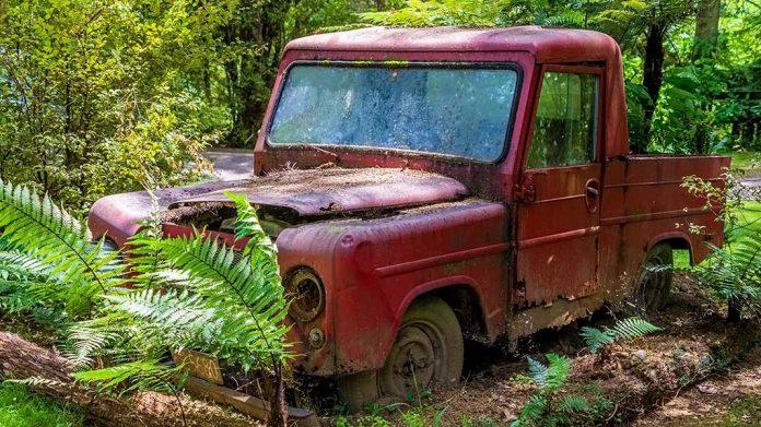 coche abandonado en el bosque