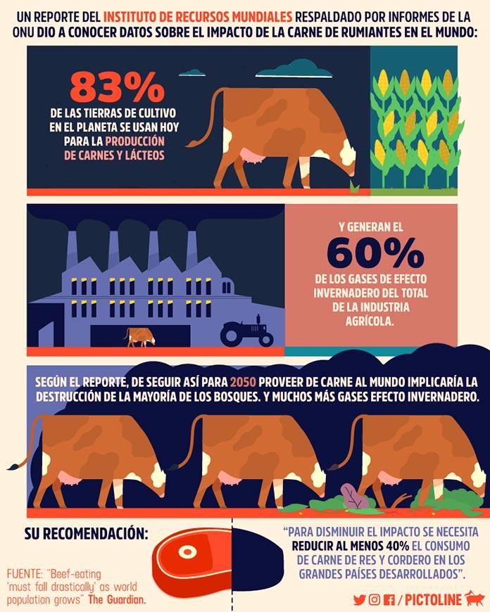 Consecuencias de la ganadería intensiva