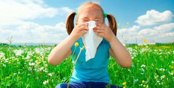 Combate la alergia con complementos dietéticos naturales.