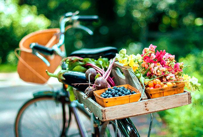 Bicicleta con frutas, verduras y flores