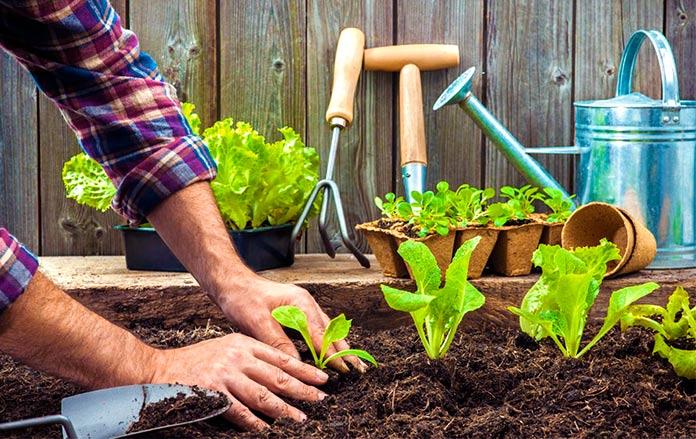 Beneficios del movimiento Slow Food