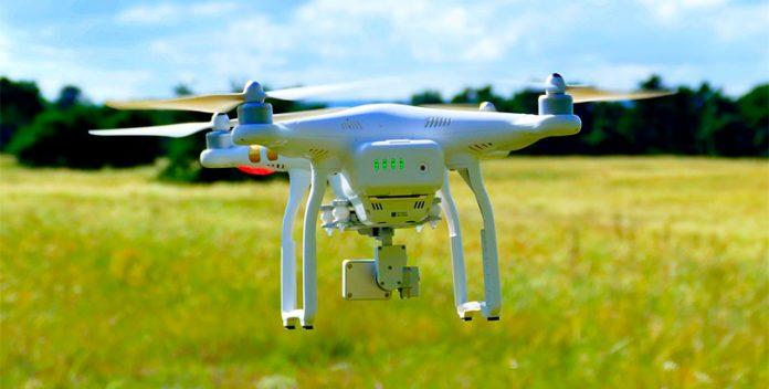 Los drones como herramienta de reforestación.