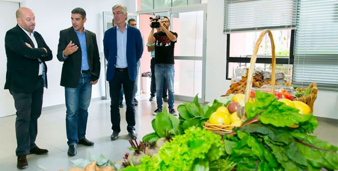 Ecocomedores: Un proyecto innovador que triunfa en Canarias.