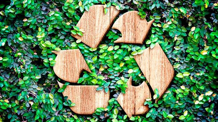 Empresas ecologicas
