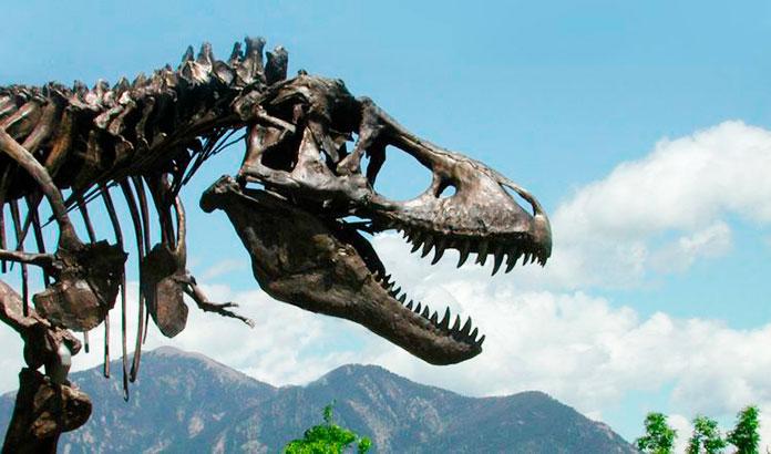 Esqueleto del Tyrannosaurus Rex
