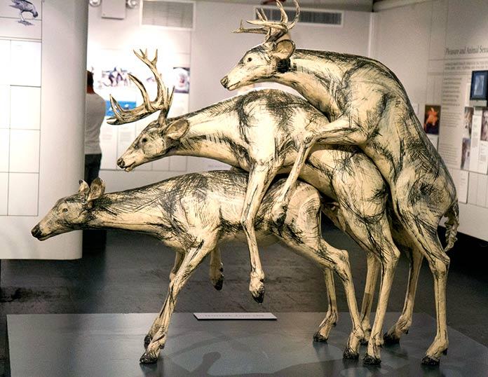 "Escultura ""The Sex Lives of Animals"" (MoSex NY)"
