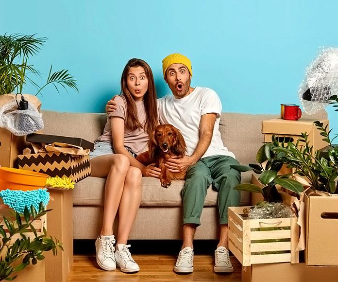 pareja con un perro sentados en un sillón rodeados de objetos durante una mudanza