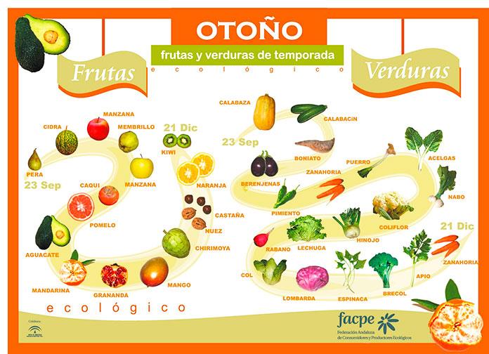 Infografía con las frutas y verduras de otoño