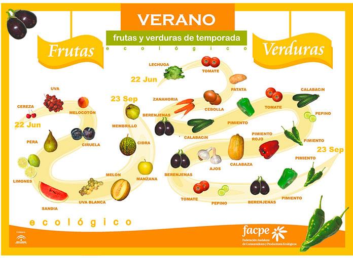 Infografía con las frutas y verduras de verano