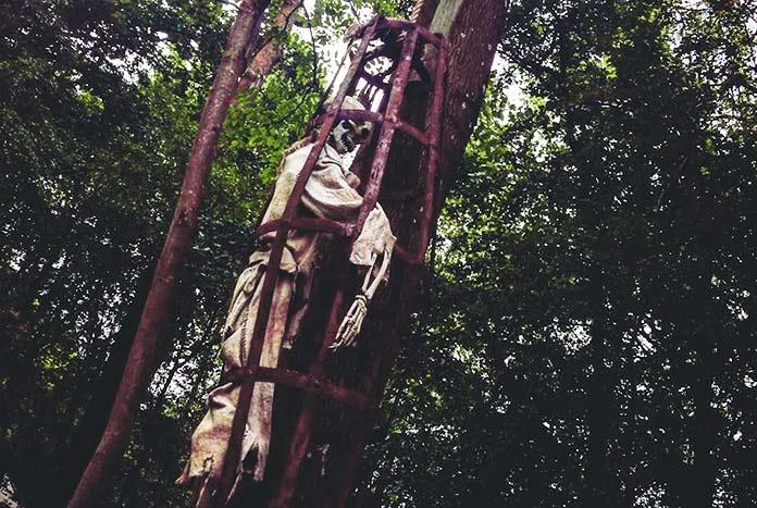 Esqueleto dentro de una jaula