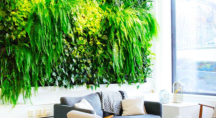 Sala de estar con jardín vertical