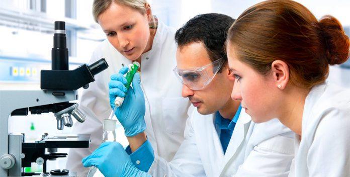 Se cultivan huesos artificiales en un laboratorio de Israel.