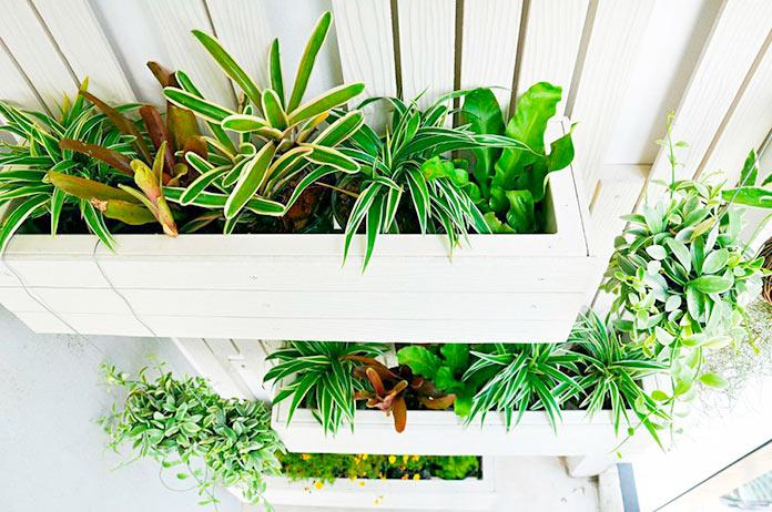 Jardineras instaladas en un panel vertical
