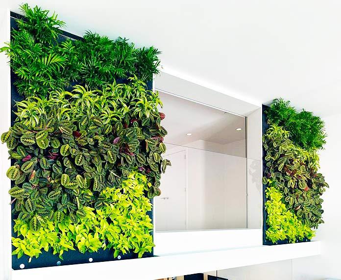 Jardín vertical minimalista decorando un espejo