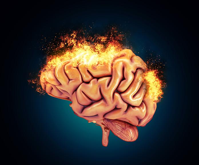 ¿Cuáles son los límites del cerebro humano?