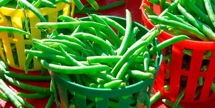 El consumo de legumbres previene la mortalidad por cáncer.