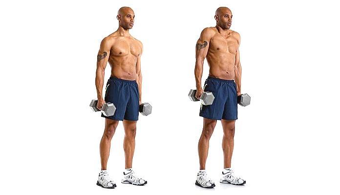 Músculos olvidados: Encogimiento de hombros