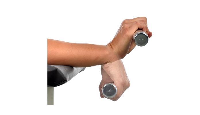 Músculos olvidados: antebrazo -
