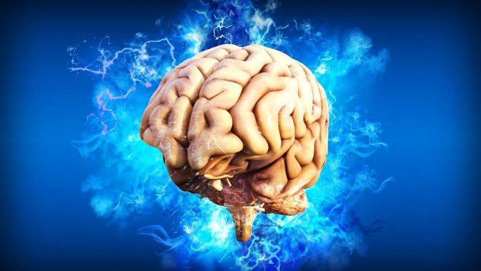 La neurociencia mueve los cimientos de la psicología y la educación y estos cursos lo demuestran