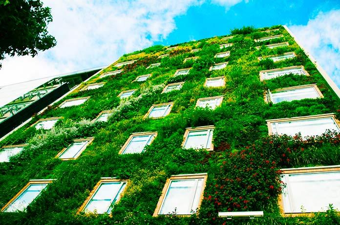 Jardín vertical en edificio