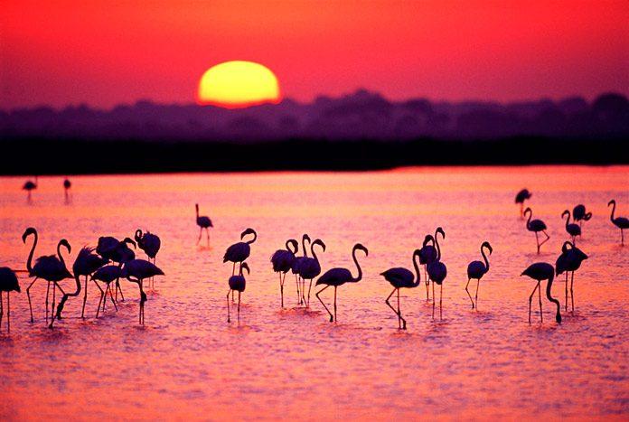 El paraíso al sur del sur: tradición, naturaleza y paz en estado puro