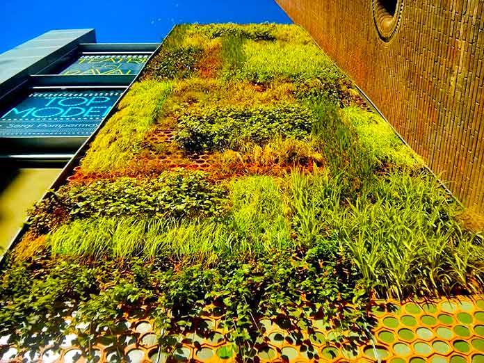 Jardín vertical del Pedró