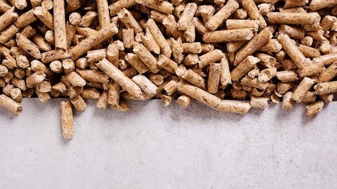 pellets sobre una superficie de cemento