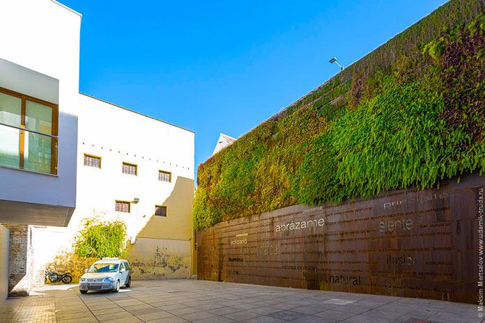 Vista lateral del jardín vertical de la Plaza del Pericón en Málaga