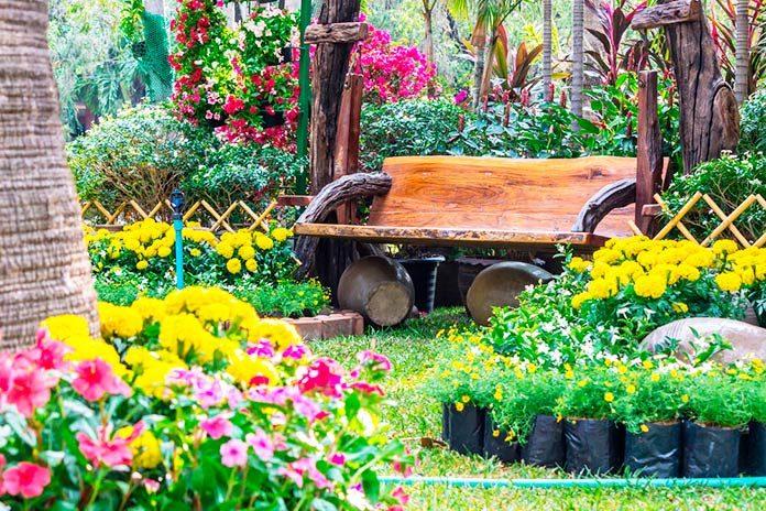 Pon a punto tu jardín con productos ecológicos.