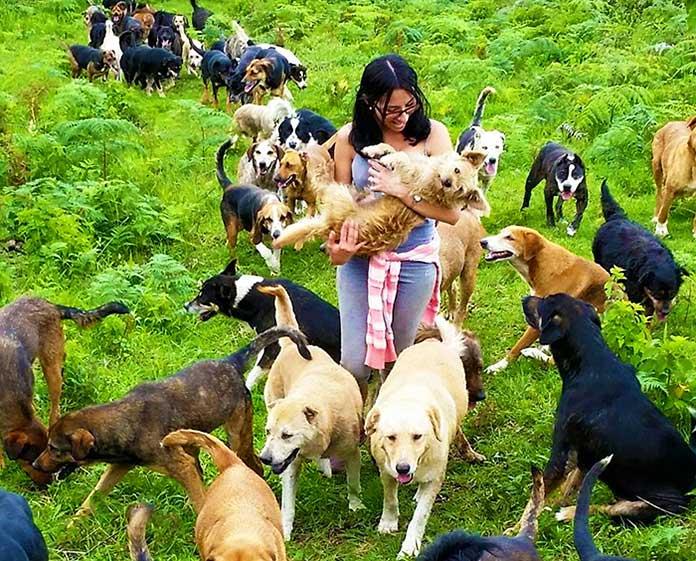 Muejer en compañia de perros
