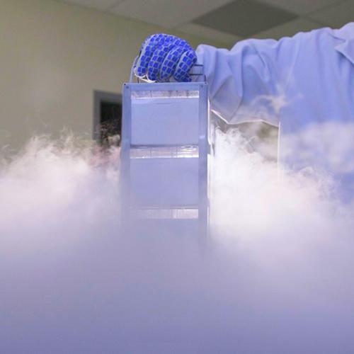 ¿Cuándo será posible resucitar o reanimar cuerpos criogenizados?