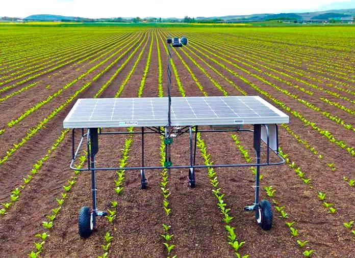 Robot agrícola inteligente EcoRobotix