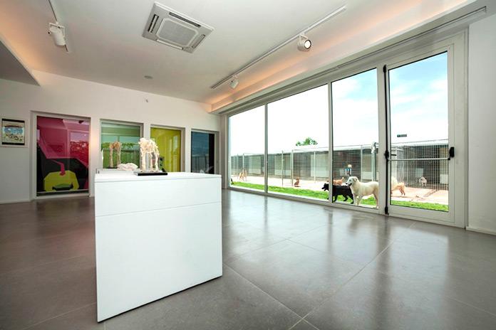 Sala del museo con vistas al hotel de perros