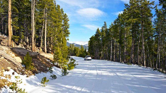 ¿Cuál es el mejor seguro de coches para conducir sin problemas en invierno?