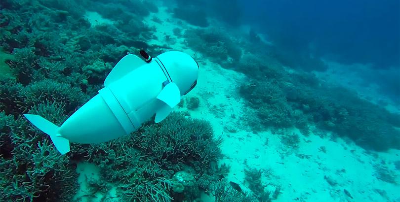SoFi, el robot marino fabricado con impresoras 3D.