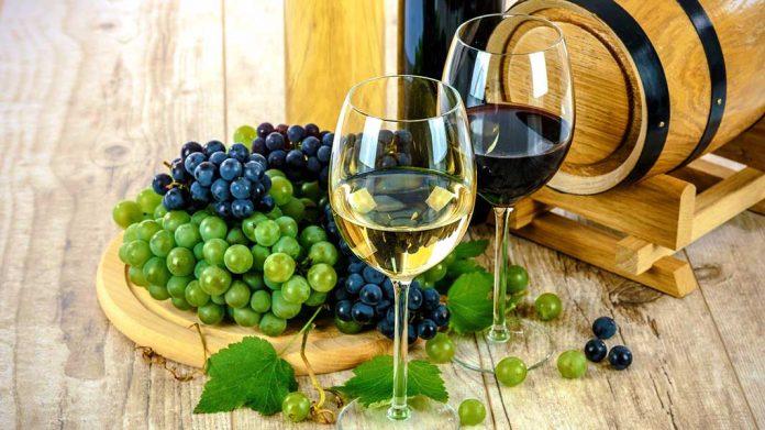 ¿Qué son los vinos tempranillo?