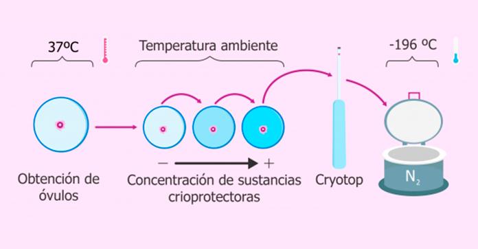 Vitrificación de ovocitos