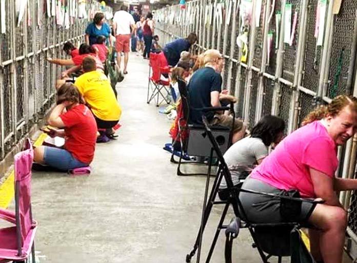 Voluntarios en el refugio de Phoenix, Arizona